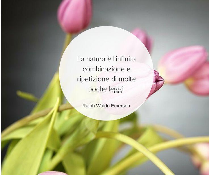 Quote by Ralph Waldo Emerson #quotes #quote #aforismi #nature #natura #flowers #citazioni #naturequotes #Ralph #Waldo #Emerson #RalphWaldoEmerson