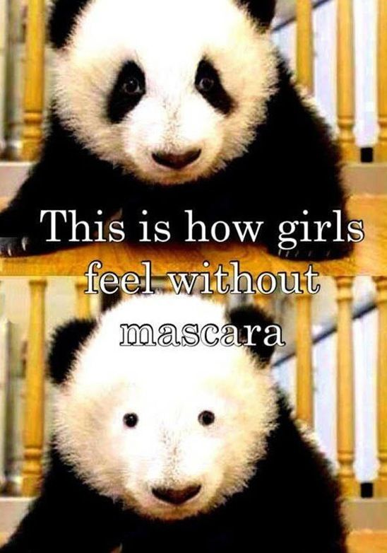 Mascara. Don't Leave Home Without It. ---- funny pictures hilarious jokes meme humor walmart fails