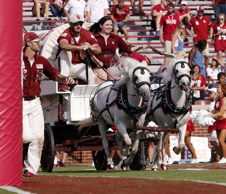 The Sooner Schooner goes across the field following a score during the second half of a college football game between the Oklahoma Sooners (OU) and the University of Texas at El Paso Miners (UTEP) at Gaylord Family-Oklahoma Memorial Stadium in Norman, Okla., Saturday, Sept. 2, 2017. Photo by Steve Sisney, The Oklahoman