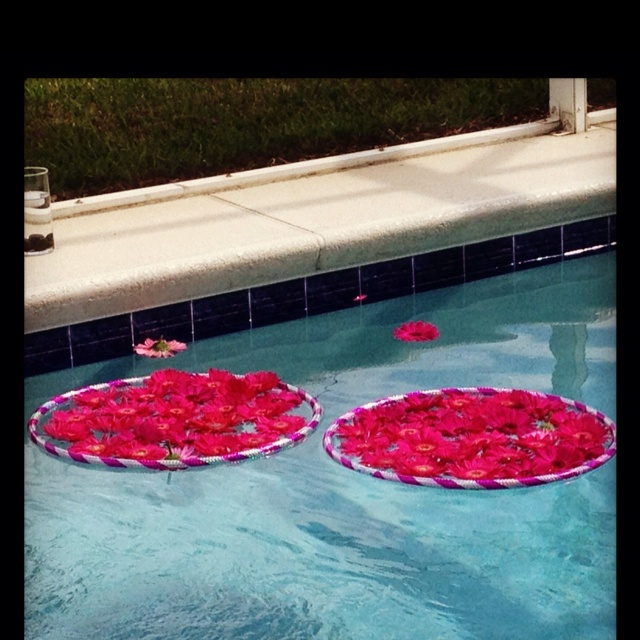 pool decor by precious occasions - Pool Decorations