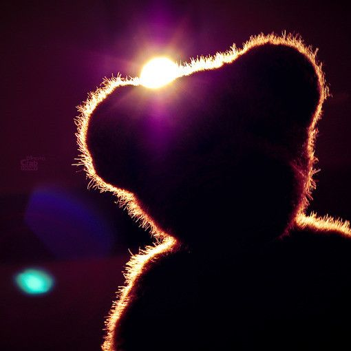 teddy bear silhouette