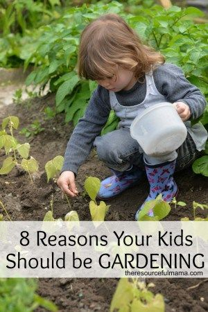 The Top 8 Reasons Your Kids Should be Gardening: benefits of gardening