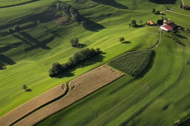 Agricultural landscape near Le Châtelard, canton of Fribourg, Switzerland - photo by Yann Arthus-Bertrand