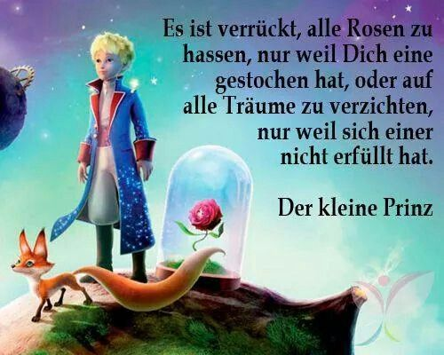 Es ist verrückt alle Rosen zu hassen, nur weil dich eine gestochen hat, oder auf alle Träume zu verzichten, nur weil siich einer nicht erfüllt hat.