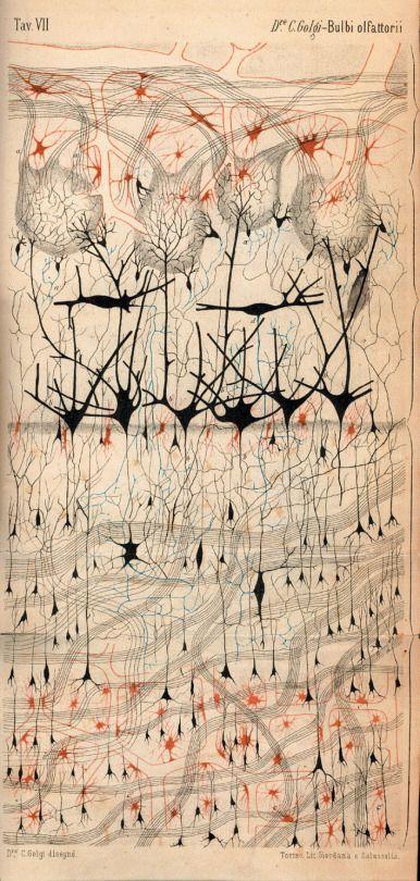 The Artful Gene