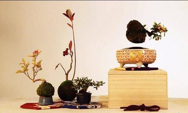 beautiful artware,air bonsai.