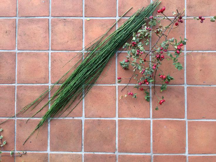 Pojedyncze ucięte pędy żarnowca zwijamy w okrąg i związujemy, na przykład sznurkiem ogrodniczym lub jakimkolwiek innym, byle zielonym :) Następnie dowiązujemy kolejne zielone pędy. Co któryś pęd żarnowca wplatamy gałązki róży.