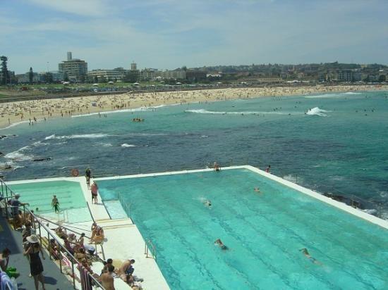 Bondi to Coogee Beach Coastal Walk #Sydney #Australia http://www.tripadvisor.com.au/ShowForum-g255060-i122-Sydney_New_South_Wales.html
