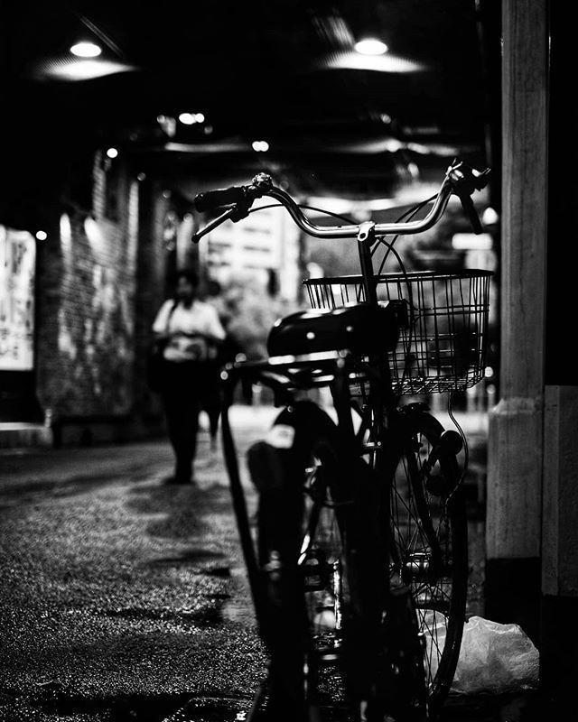 I Can Ride My Bike With No Handlebars No Handlebars No Handlebars