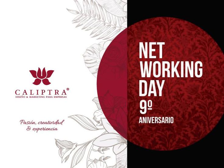 Networking Day - Punto a Punto Mendoza 10.09.2015