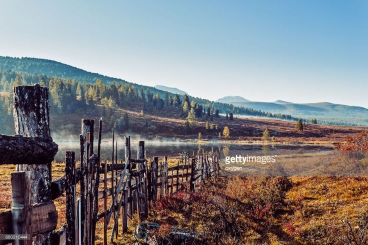 Stock Photo : Morning Sunrise with Fog, old fence near lake of the mountain pass Ulaganskiy. Altai, Russia by Oksana Ariskina on @gettyimages. #OksanaAriskina #Photography #Nature #Altai #Altay #Mountain #Russia #Ulagan #Lake #Morning #Fence  #gettyimages #gettyimagescreative  #gettyimagesnew #getty #gettycreative
