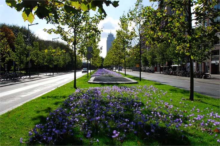 255 best streetscape images on pinterest landscape for Buro design luxembourg