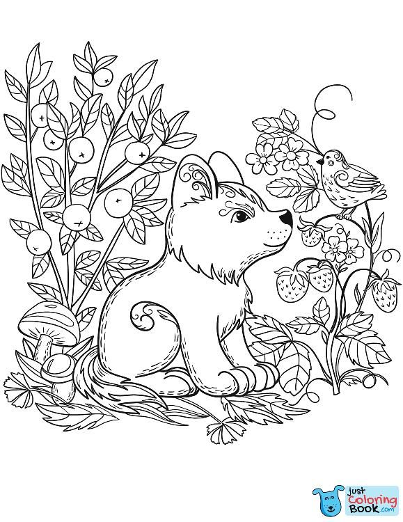 Printable Puppy Dog In The Forest Coloring Pages Dog Coloring