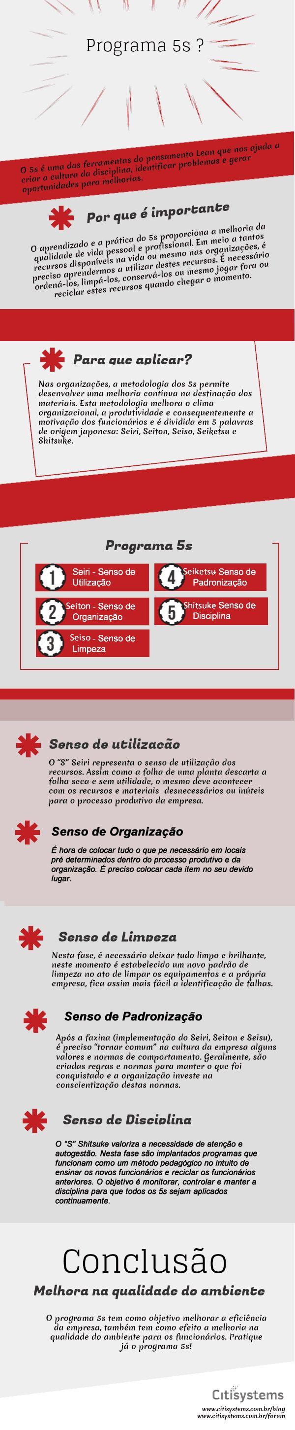 programa 5s infográfico