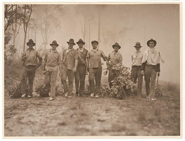 Residents and volunteers armed with green branches against bushfire, c. 1920s by Sam Hood by State Library of New South Wales collection, via Flickr