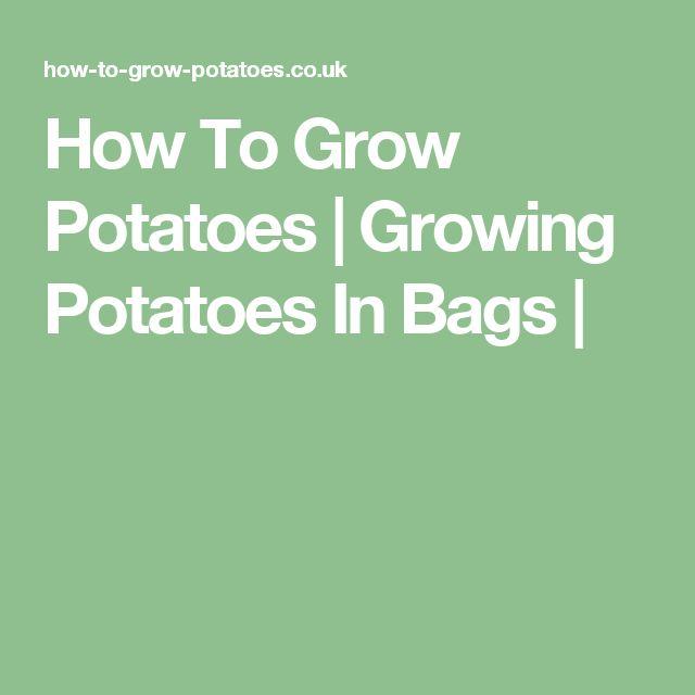How To Grow Potatoes | Growing Potatoes In Bags |