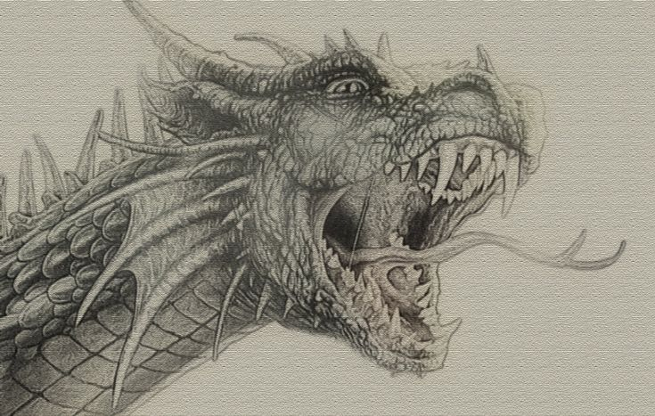 9 best mythic eyes images on pinterest dragon eye for Cool detailed drawings