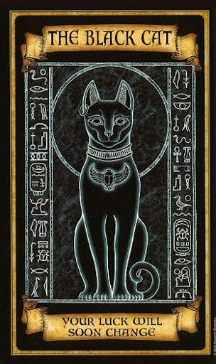 Tarot Card The Black Cat   By: Madame Endora Fortunetelling Cards  Divination.....