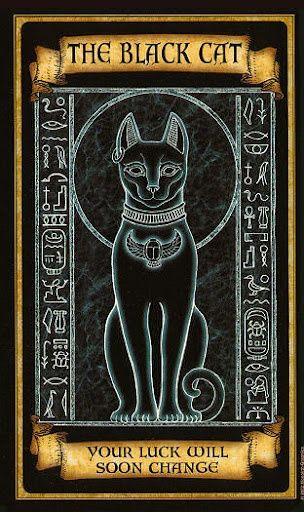 Tarot Card Design Jacket