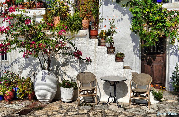 A Beautiful Backyard | by Jessie Kotini