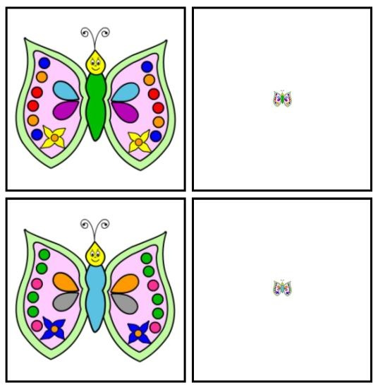 Il s'agit de mettre en paires des papillons identiques dont l'un doit être grossi à la loupe pour être identifiable.