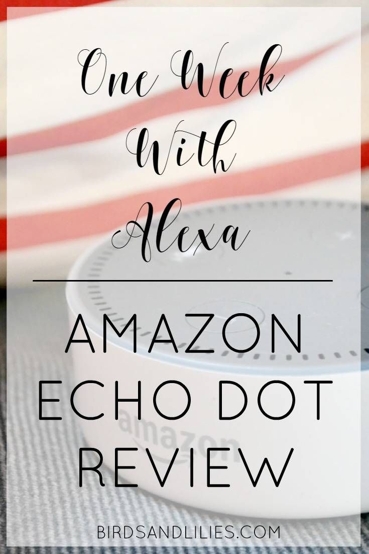 Thinking about getting an Echo Dot or an Echo? Find out all about it in this Amazon Echo Dot review and see if it's right for you!