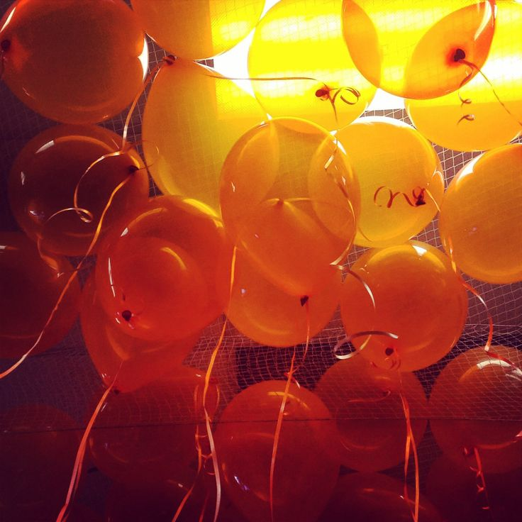 46 Best Images About Loose Helium Balloons On Pinterest