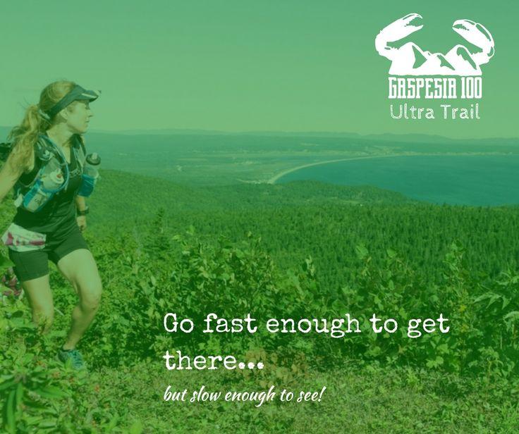 Ultra Trail Gaspesia 100 - Trail Running - Quotes - Gaspesie