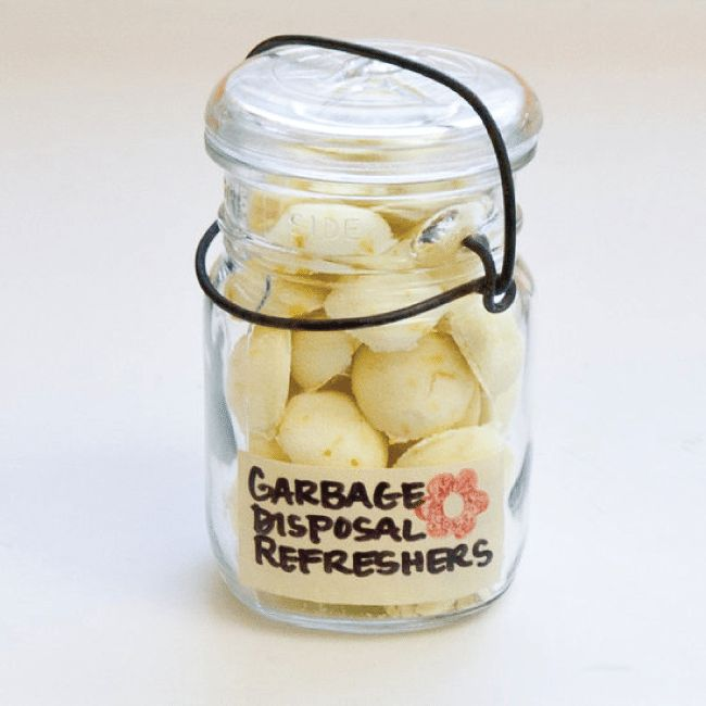 Make your own garbage disposal refreshers
