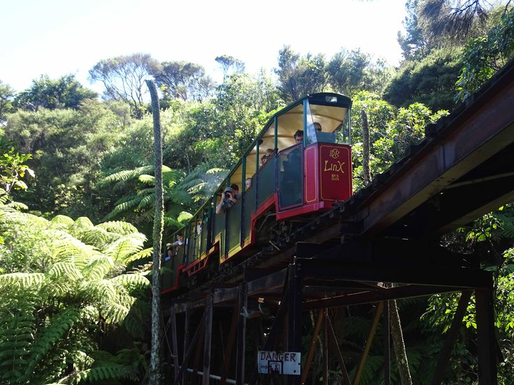Driving Creek Railway early 2015