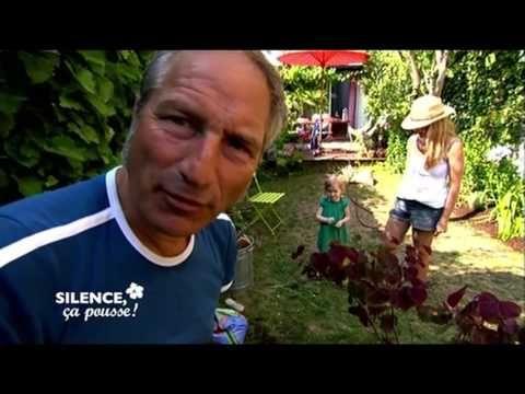 Pas de panique: faire un jardin anglais d'un jardin banal - Silence, ça pousse ! - YouTube