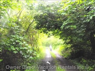 The Lusmagh Walk in Banagher, Ireland