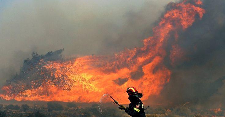 Combate a incêndios no meio rural - Agroales TV