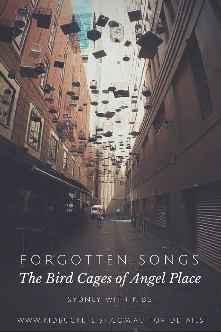 Forgotten Songs : The Bird Cages of Angel Place
