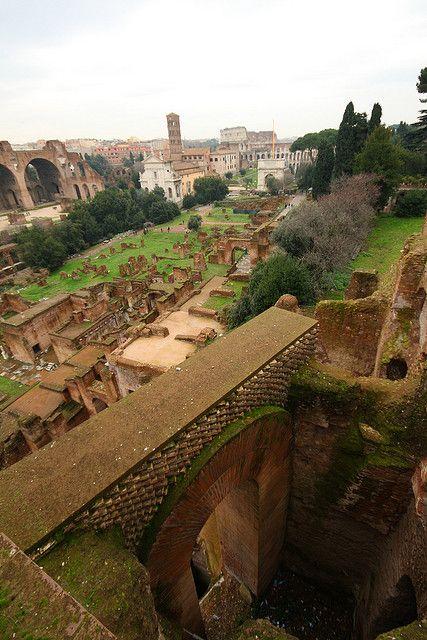 Palatine Hill, al los pies del monte palatino nace Roma, fundada por Romulo y Remo (origen mitologico)