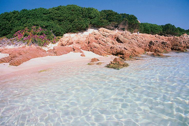 La Spiaggia Rosa fa parte dell'arcipelago della Maddalena in Sardegna. E' una delle mete preferite dai turisti sia per il suo mare cristallino simile ai Caraibi che per la sua sabbia, colorata in quel modo grazie ai gusci di crostacei frantumati. Potete visitare la Maddalena solo con una Guida turistica, durante il vostro soggiorno ad Olbia o in un'altra località della Costa Smeralda. Date un'occhiata alle nostre strutture: http://www.bbplanet.it/dormire/costa-smeralda/