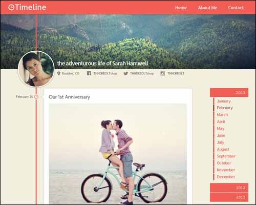 100+ Best Responsive Adobe Muse Themes - VNROnline