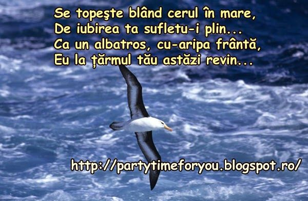 Party time: Se topeşte blând cerul în mare, De iubirea ta sufl...