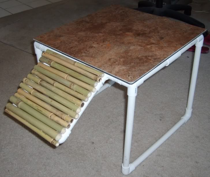 diy basking area for turtles - Google Search