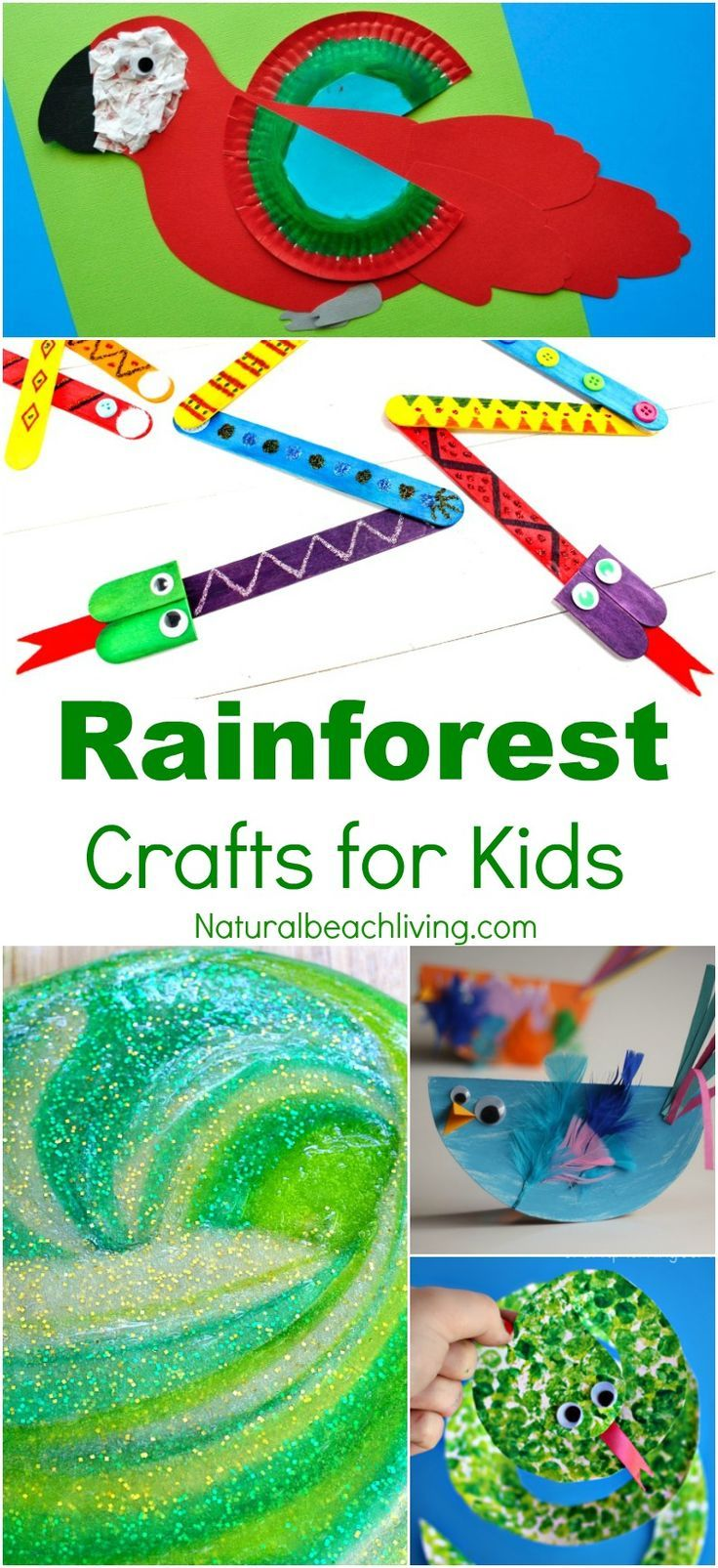 10+ Amazing Rainforest Crafts Kids Can Make, Rainforest and Jungle Slime, Paper Plate Monkey Craft, Rain Stick, Rainforest Preschool Theme, Crafts for Kids
