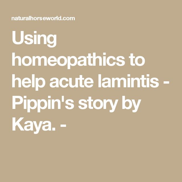 Using homeopathics to help acute lamintis - Pippin's story by Kaya. -