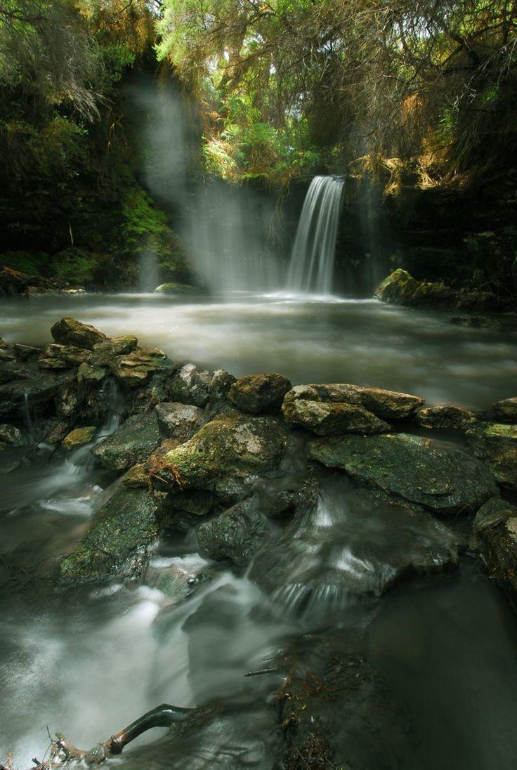 Kerosene Creek is a free hot spring outside of Rotorua NZ