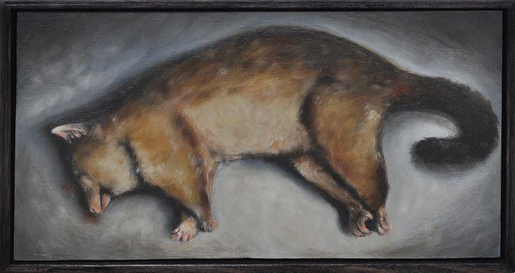Common Brushtail Possum  (Trichosurus vulpecula) Oil painting 2014