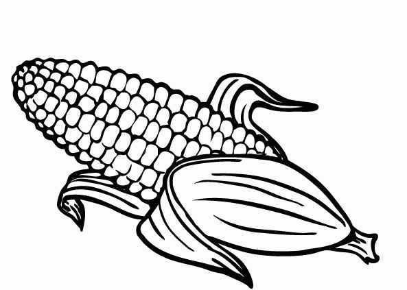 Galerry coloring page for corn