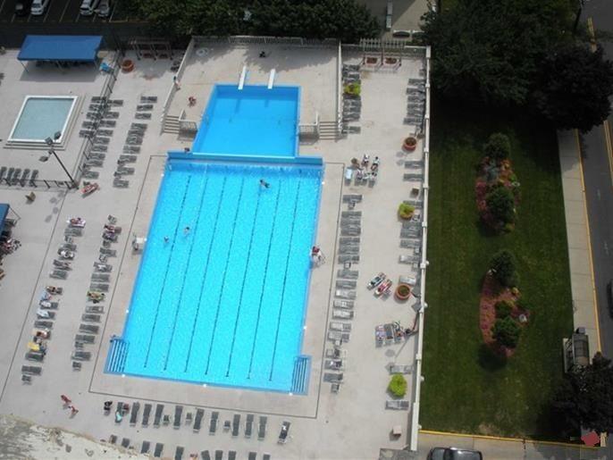 1000 Ideas About Olympic Size Pool On Pinterest Walks Binghamton New York And Daytona Beach