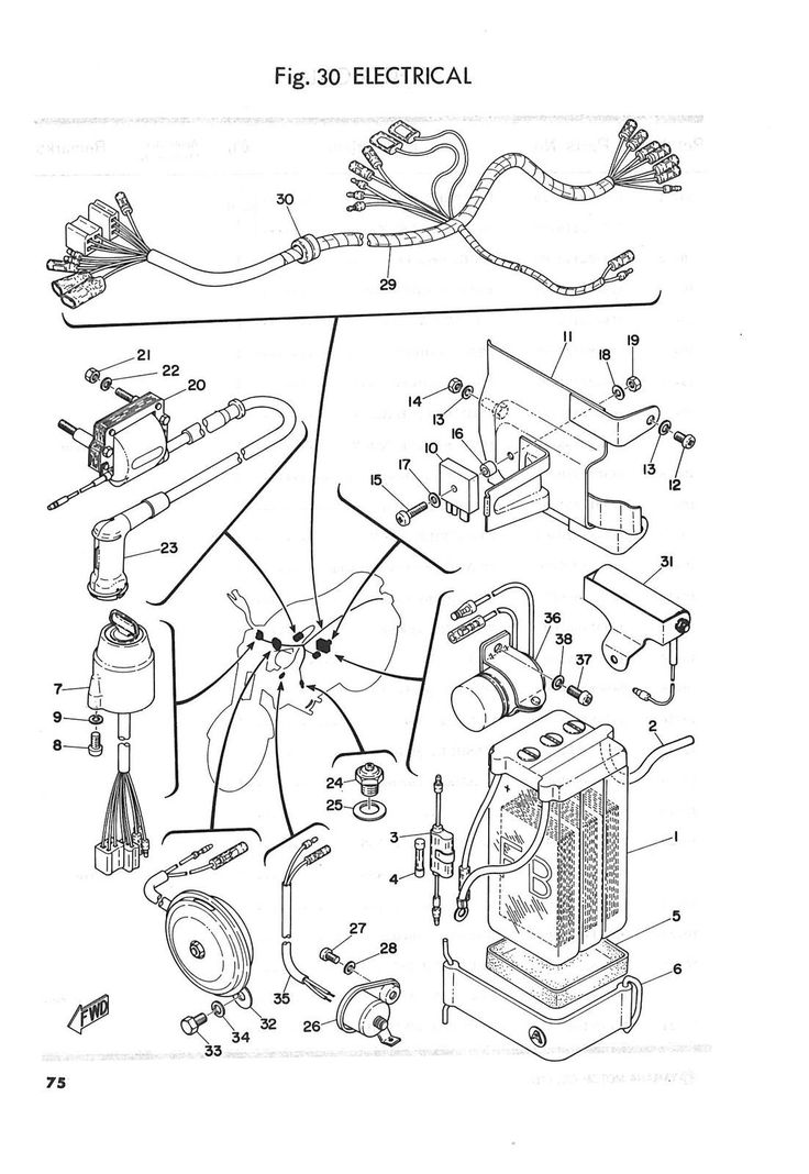 Diagram Yamaha Fs1e Wiring Diagram Genevieve Moody Diagram