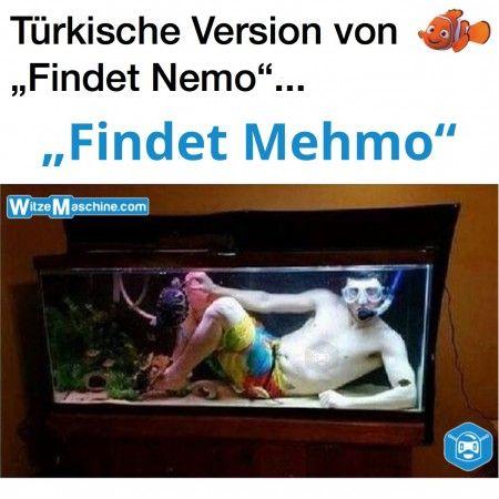 Türken Witze - Findet Nemo Fail - Türkischer Nemo Mehmo