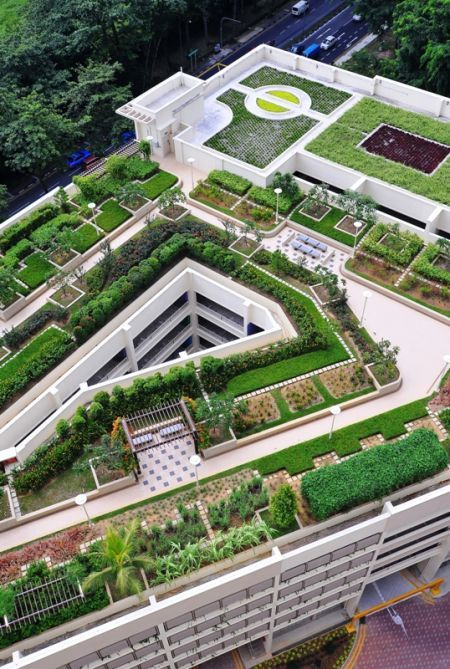 HDB Car Park - roof garden at 18 Holland Rd Singapore. Projects | Skyrise Greenery