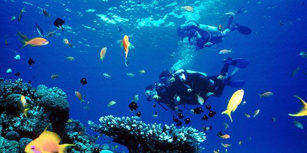 Scuba Diving In Croatia, Dubrovnik   Diving Center Blue Planet