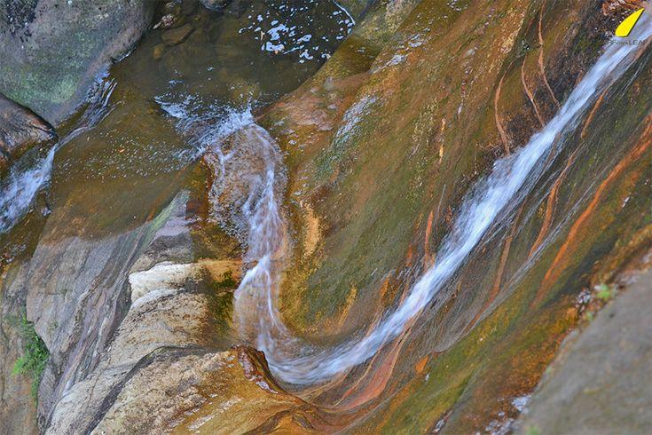montagnes-bleues-chute-d'eau